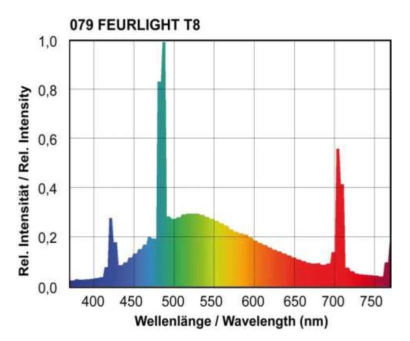 spectrum of an fluorescent lamp for plants by Narva